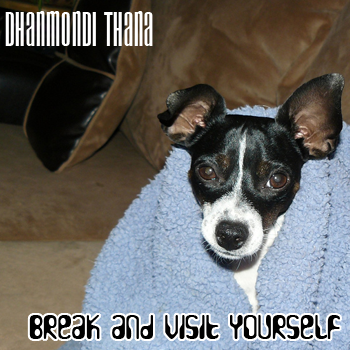 Dhanmondi Thana: Break and visit yourself